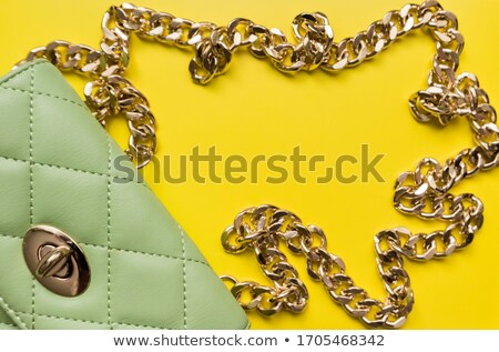 vintage elegant stylish woman stock photo © glyph