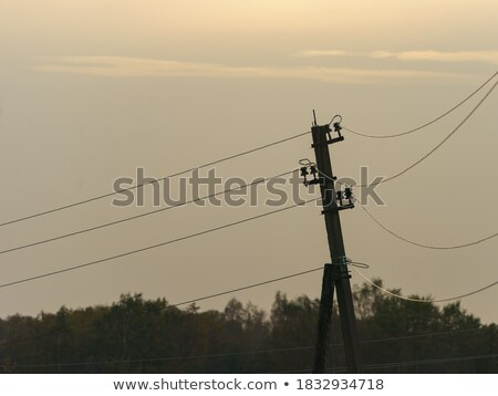 Electric pole towers backlight cloudy sky Stock photo © lunamarina