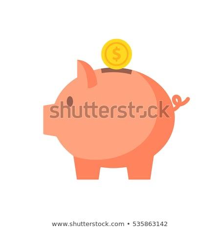 Desenho animado piggy bank bobo dinheiro arte fazenda Foto stock © fizzgig