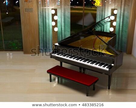 Piano de cauda noite 3d render preto local luz Foto stock © Elenarts