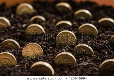 Cultivating Pound Sterling	 Stock photo © idesign