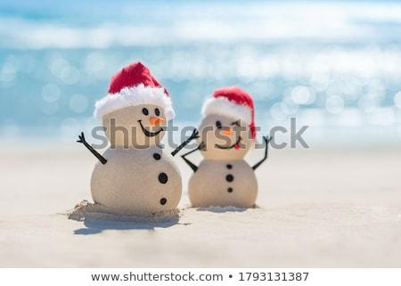 Noel · Avustralya · yaz · ay · açık · havada · plaj - stok fotoğraf © vividrange