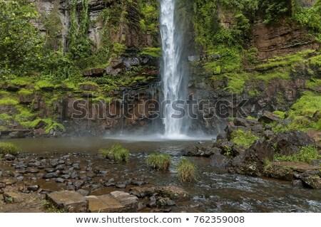 lone creek waterfall stock photo © intsys