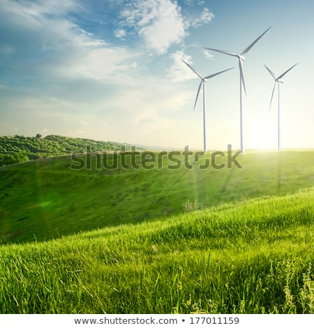 Wind generators turbines on summer landscape Stock photo © artjazz
