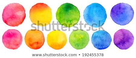 Vector set of rainbow watercolor circles Stock photo © gladiolus