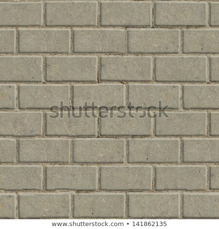 Decorative Gray Rectangular Paving Slabs. Stock photo © tashatuvango