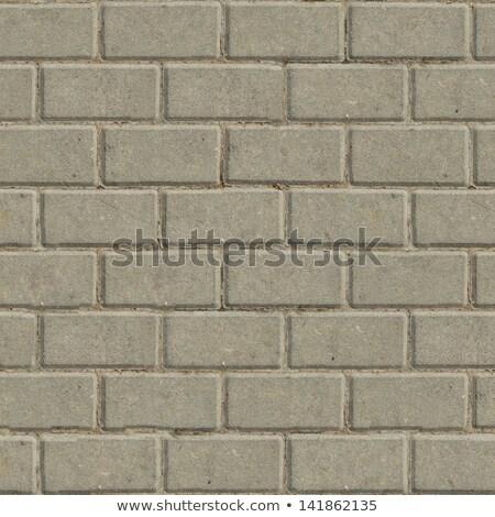 decorative gray rectangular paving slabs stock photo © tashatuvango