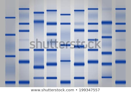 DNA Gel Electrophoresis Stock photo © phakimata