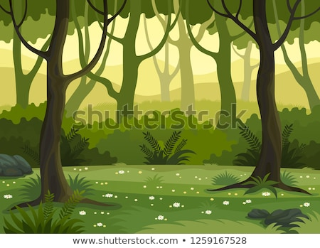 glade in the forest Stock photo © OleksandrO