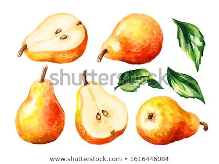 Pear on branch Stock photo © stevanovicigor