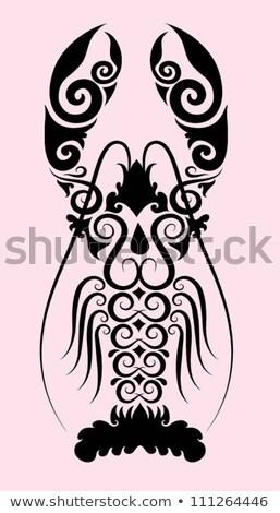 フローラル · レストラン · メニュー · デザイン · 花柄 · カバー - ストックフォト © morphart