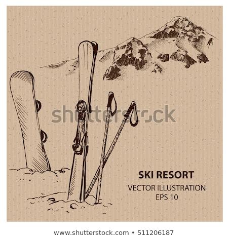 lány · snowboard · téli · sport · illusztráció · vektor · formátum - stock fotó © pashabo