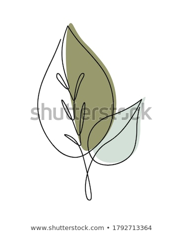 Leaves 1 Stock photo © PokerMan