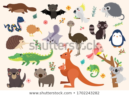 Kaketoe cartoon vector cartoon mascotte illustratie clipart Stockfoto © doddis