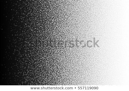 Vettore senza soluzione di continuità mezzitoni gradiente retro Foto d'archivio © Samolevsky