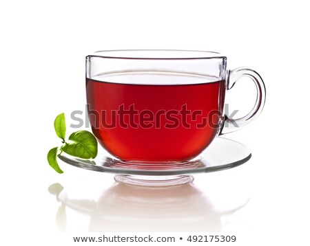 Vermelho chá arbusto naturalmente cafeína Foto stock © PixelsAway