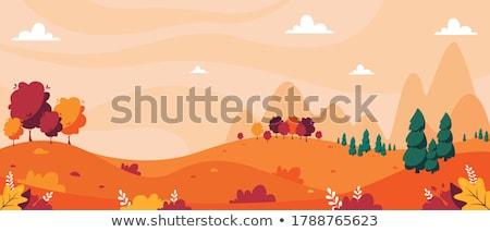 Tájkép ősz erdő domboldal felhős nap Stock fotó © Kotenko
