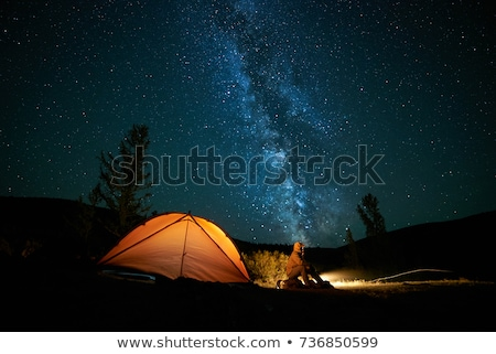 illuminated tent at night in the forest stock photo © vapi