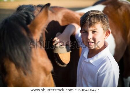 Jongen paard boerderij kind zomer Stockfoto © wavebreak_media