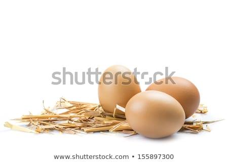Bruin eieren stro houten witte achtergrond Stockfoto © Digifoodstock