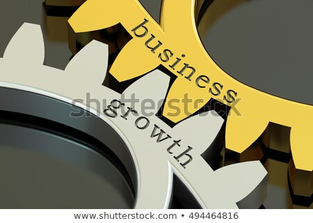 developing business growth strategy concept 3d render stock photo © tashatuvango