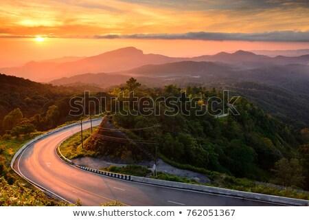 Zonsopgang mooie weg bos zomer landschap Stockfoto © ixstudio