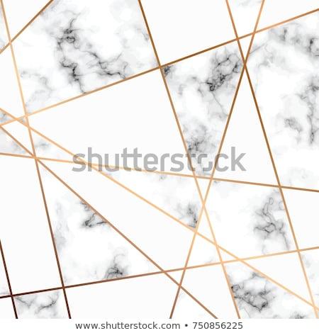 Wektora marmuru tekstury projektu złoty geometryczny Zdjęcia stock © BlueLela
