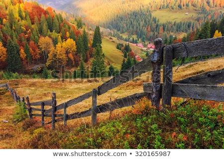 autumn mountain farm view Stock photo © wildman
