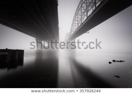 Nebuloso paisagem congelada rio Ucrânia inverno Foto stock © Kotenko