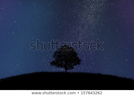 Lonely tree in front of a starry sky Stock photo © Ustofre9