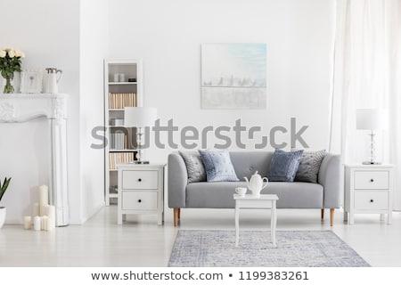 Regały sofa pokój wnętrza ilustracja osobowych Zdjęcia stock © lenm