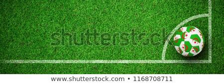 футбола Алжир цветы мнение Сток-фото © wavebreak_media