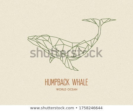 Low Poly Art Outlined Vector Graphic Background Stock photo © smith1979