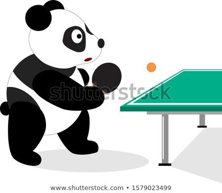 Cartoon bear holding a tennis racket. Stock photo © bennerdesign