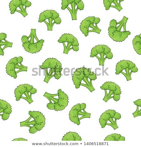 Brocoli modèle vert vecteur texture Photo stock © popaukropa