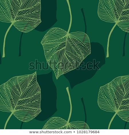 bluszcz · ściany · zielone · oddziału · szary - zdjęcia stock © ruslanshramko