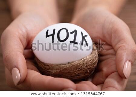 human hand holding 401k egg in nest stock photo © andreypopov