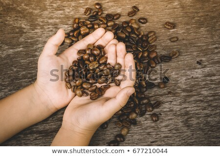 Fresh coffee beans in the boy's hand Stock photo © galitskaya