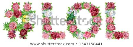 にログイン 言葉 笑 水彩画 花 装飾 ストックフォト © Natalia_1947