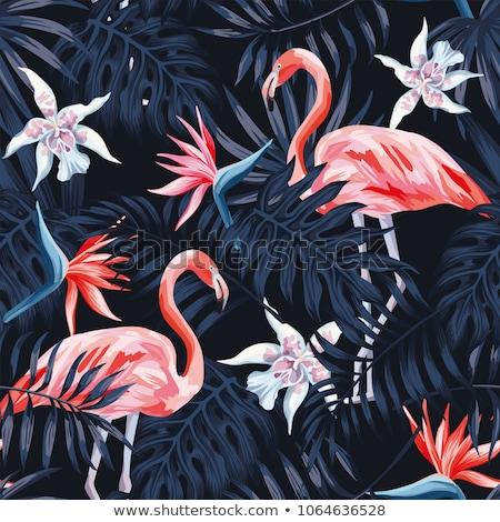 Végtelen minta rózsaszín flamingó madár tavasz terv Stock fotó © odina222