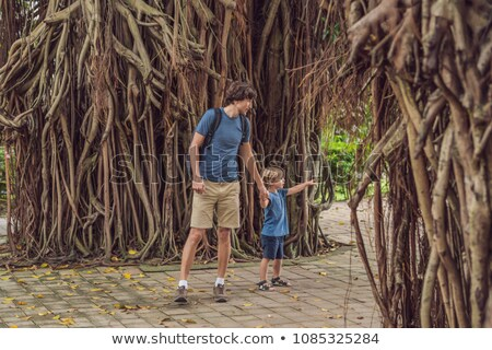 Stock photo: Dad and son in a rainy forest against the background of the roots of a tree