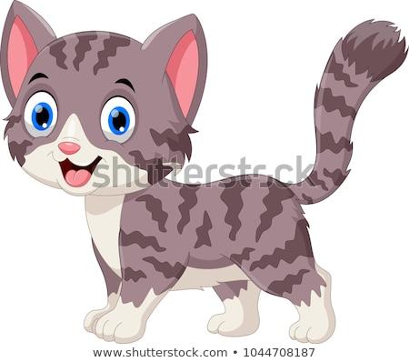 happy gray cat cartoon animal character Stok fotoğraf © izakowski