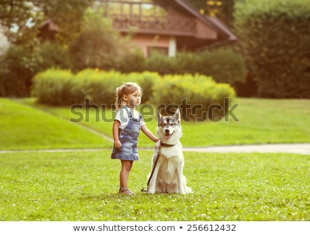 girl in the park their home with a dog Husky Stock photo © ElenaBatkova