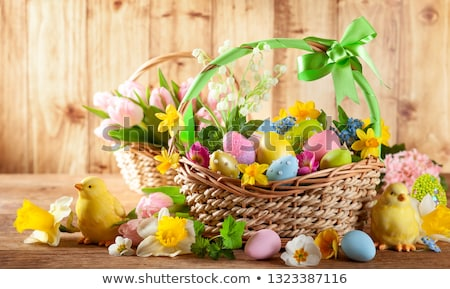 colorido · páscoa · decorações · fresco · flores · da · primavera · coelho - foto stock © melnyk
