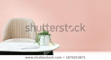 Kafe iç tablo pembe sandalye dizayn Stok fotoğraf © robuart