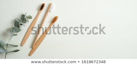 Diş fırçası çift güzellik dişçi banyo fırçalamak Stok fotoğraf © tycoon