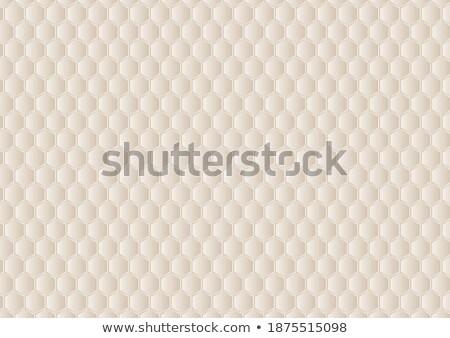 Bézs hatszög vektor illusztráció textúra fény Stock fotó © cidepix