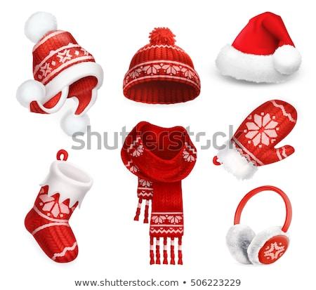 Winter hat Fell saisonabhängig Tuch Vektor Stock foto © pikepicture