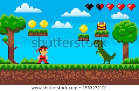 Hős sárkány nindzsa pixel játék párbaj Stock fotó © robuart