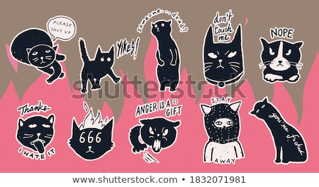 Macska vicces idézet terv mogorva kiscica Stock fotó © Zsuskaa